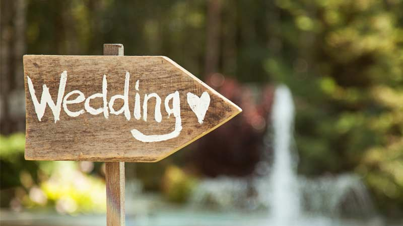 Wedding Plan Blog 1